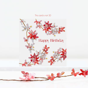 Butterfly Birthday Card, Blossom Card