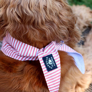 Striped Reversible Dog Bandana