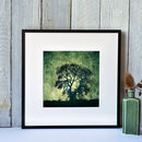 'Stormy Tree At Heddon On The Wall' Framed Giclee Print