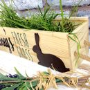 Personalised Rabbit Window Box With Grass Seeds