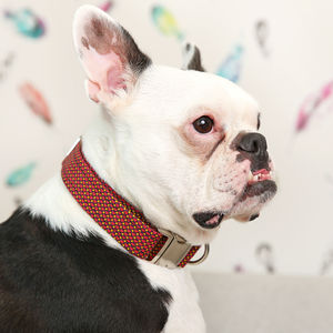 Retro Hearts Dog Collar - dog collars