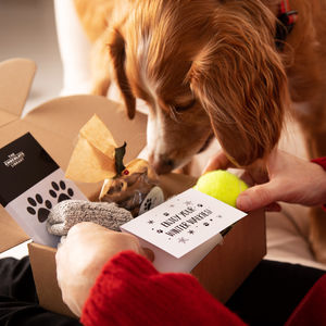 Dog And Owner Shared Dog Walking Birthday Gift Set