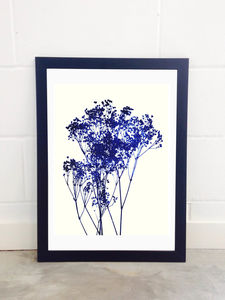 Baby's Breath By Garima Dhawan - posters & prints