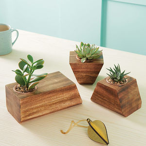 Jigsaw Succulent Holder - gifts for her sale
