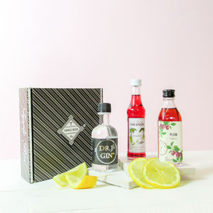 Gin Plum Sour Cocktail Kit - gin