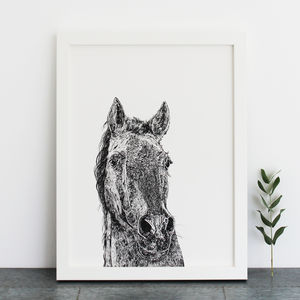 Horse Print - what's new