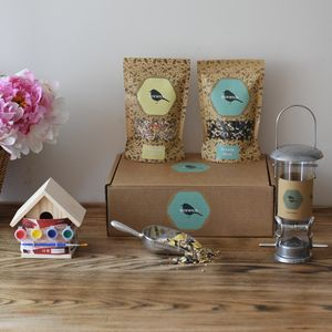 Children's Big Bird Seed Gift Box