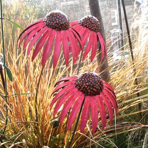 Set Of Three Echinacea Flower Sculptures - mum loves gardening