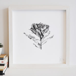 Protea Flower Print Three - artisan decor