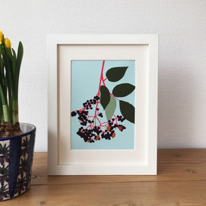 Elderberry Print - posters & prints