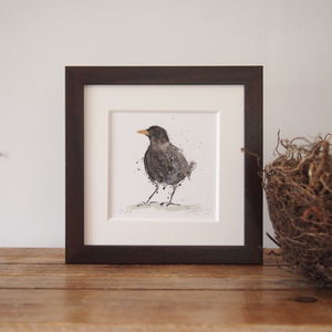 Limited Edition, Garden Bird Print, Blackbird