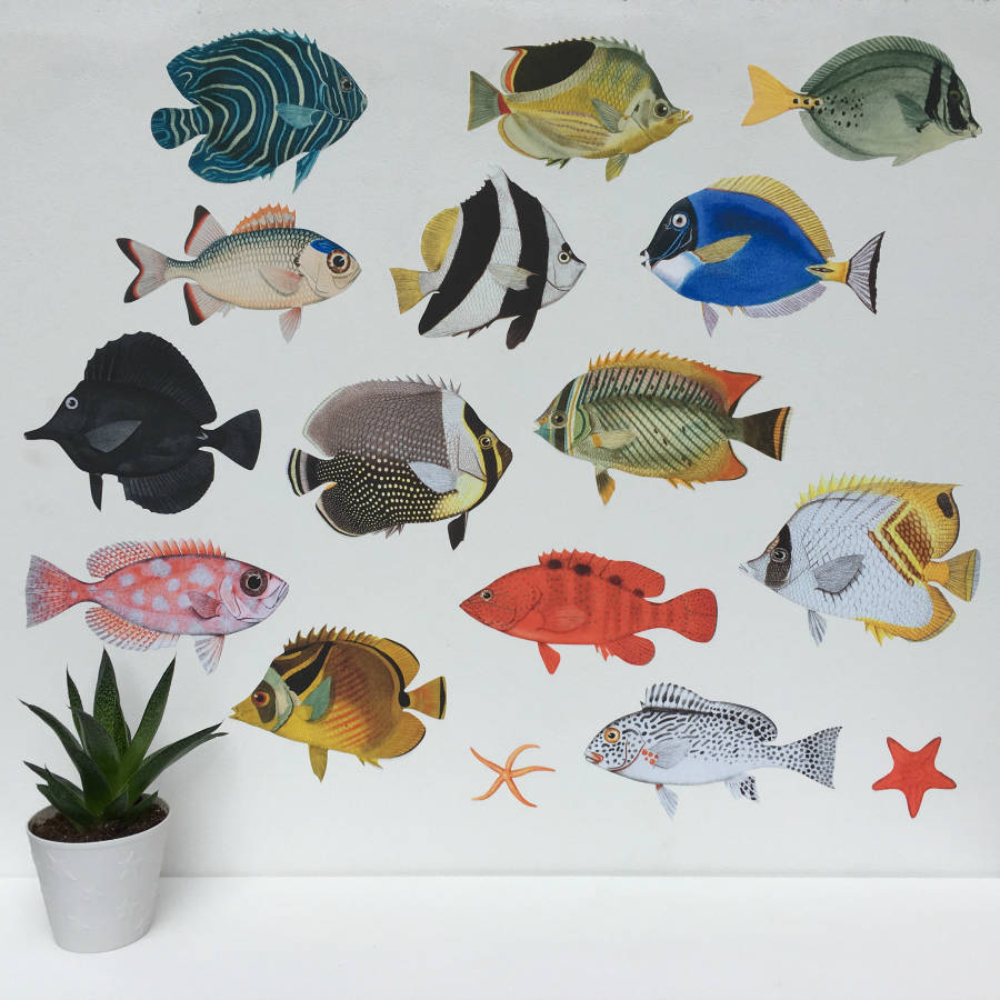 Tropical Fish Aquarium Wall Sticker Set By Chameleon And Co Notonthehighstreet Com
