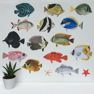 Tropical Fish Aquarium Wall Sticker Set - children's decorative accessories