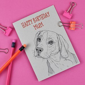 Beagle Dog Birthday Card - birthday cards