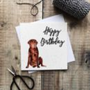 Happy Birthday Labrador Card