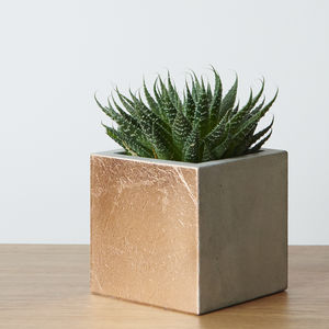 Cement Copper Leaf Planter Pot