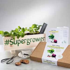 Superfood Vegetable Seed Growing Kit - personalised gifts