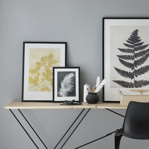 Limited Edition Botanical Prints