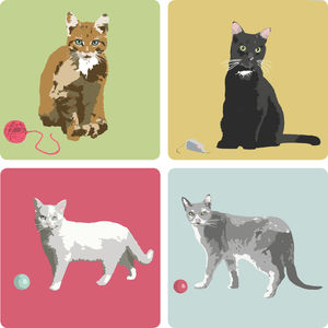 Cat Coaster Collection