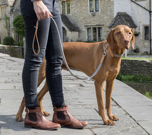 Camello Tweed And Leather Dog Lead - pet leads & harnesses