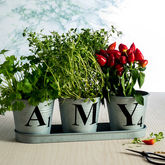 Set Of Three Personalised Zinc Buckets In A Tray - garden
