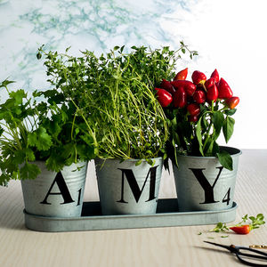 Set Of Three Personalised Zinc Buckets In A Tray - vases