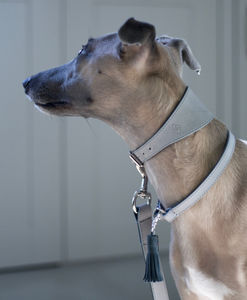 Grey Vegetable Tanned Leather And Suede Hound Collar