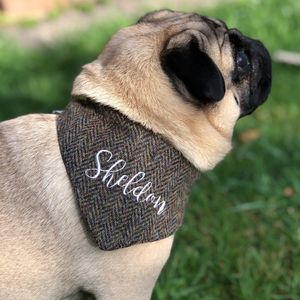 Personalised Harris Tweed Dog Bandana - dogs