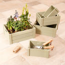 Set Of Five Potting Shed Sage Green Crates