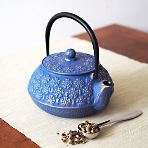 Blue Mizu Cast Iron Teapot 600ml Japanese Style - teapots