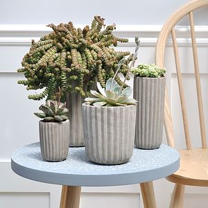 Folded Cement Vase And Pot - gardening