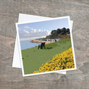 A Herd Of Golden Daffodils Beach Scene Card