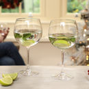 Set Of Two Amelie Stemmed Gin Glasses
