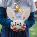 Bunny Tumbler And Biscuit Ears