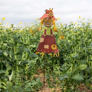 Outdoor Scarecrow - art & decorations