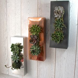 Picture Frame Garden Wall Planter - wall art