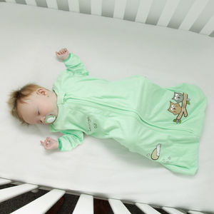 Winter Sleeping Bag With Sleeves Mint Owl - new in baby & child