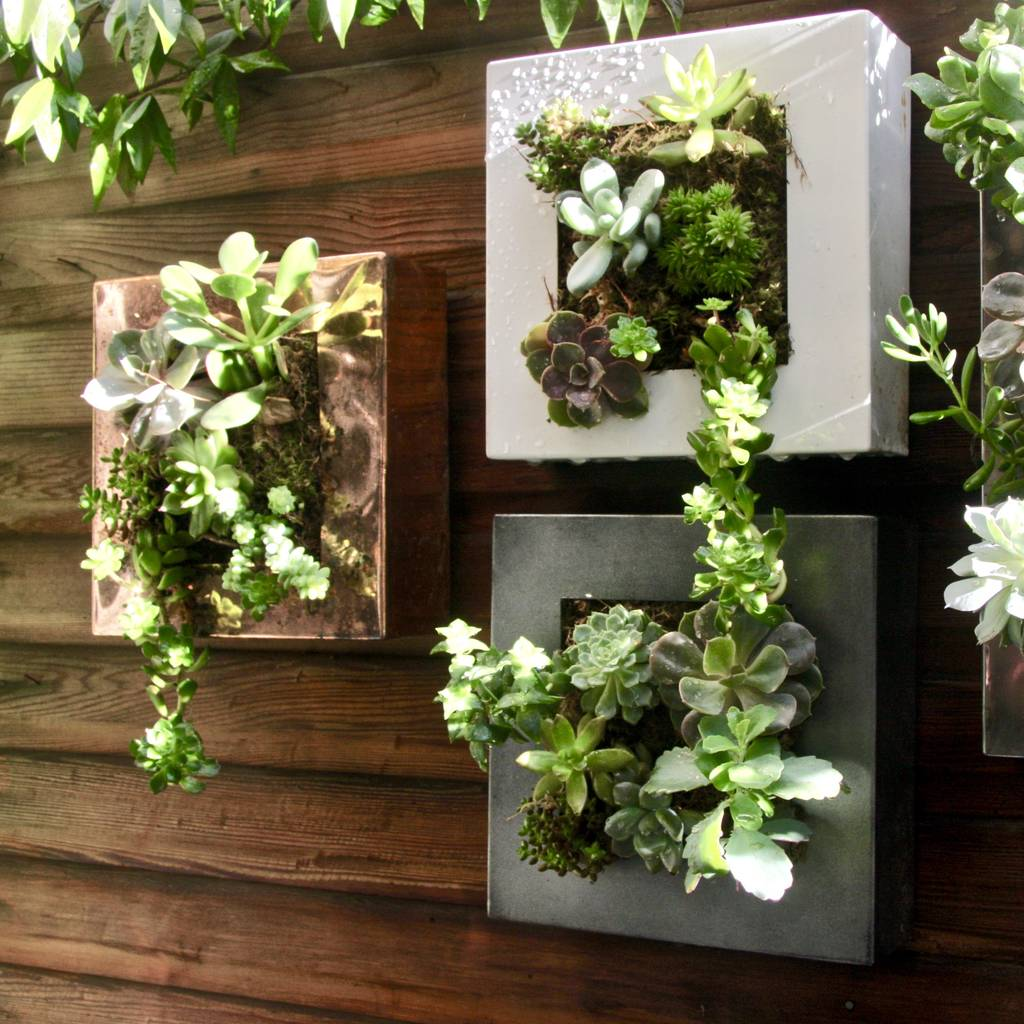 Picture Frame Planter By London Garden Trading