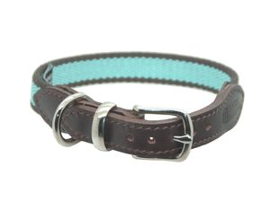 Striped Cotton Webbing Collar - dog collars