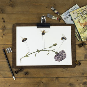 Bee Print - animals & wildlife