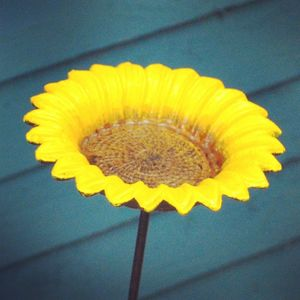 Sunflower Bird Feeder - bird feeders