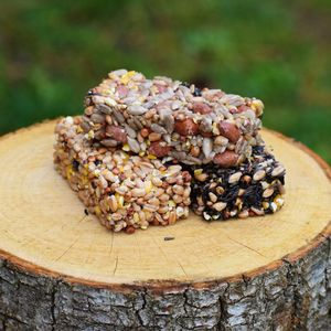 Bird Seed Flapjacks - new in pets