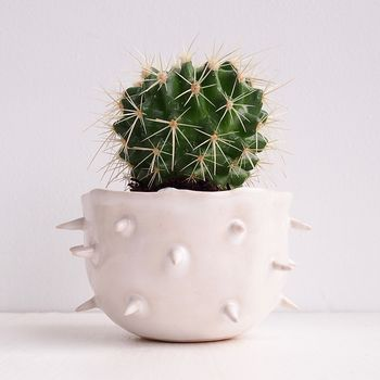 Handmade Small White Spiky Ceramic Cactus Planter