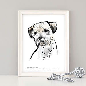 Border Terrier Print, Breed Traits Or Personalised - animals & wildlife