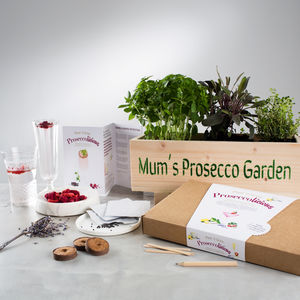 Prosecco Garden Windowsill Planter And Growing Kit - personalised gifts