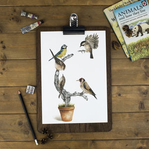 British Garden Birds Print - animals & wildlife