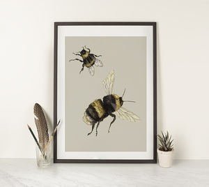Bumblebees Illustration Print - animals & wildlife