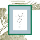 Zodiac Constellation Art Print