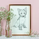 Personalised Pet Portrait Line Drawings