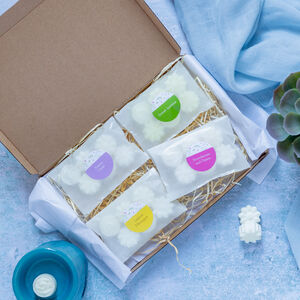 Wax Melt Collection Letterbox Gift